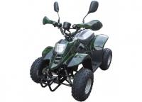 Детский квадроцикл SHERHAN 500 800W